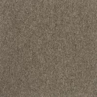 Ковровая плитка Modulyss First 601