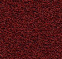 Грязезащитное покрытие Forbo Coral Brush Pure 5723