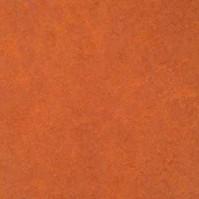 Натуральный линолеум Forbo Marmoleum Fresco 3870